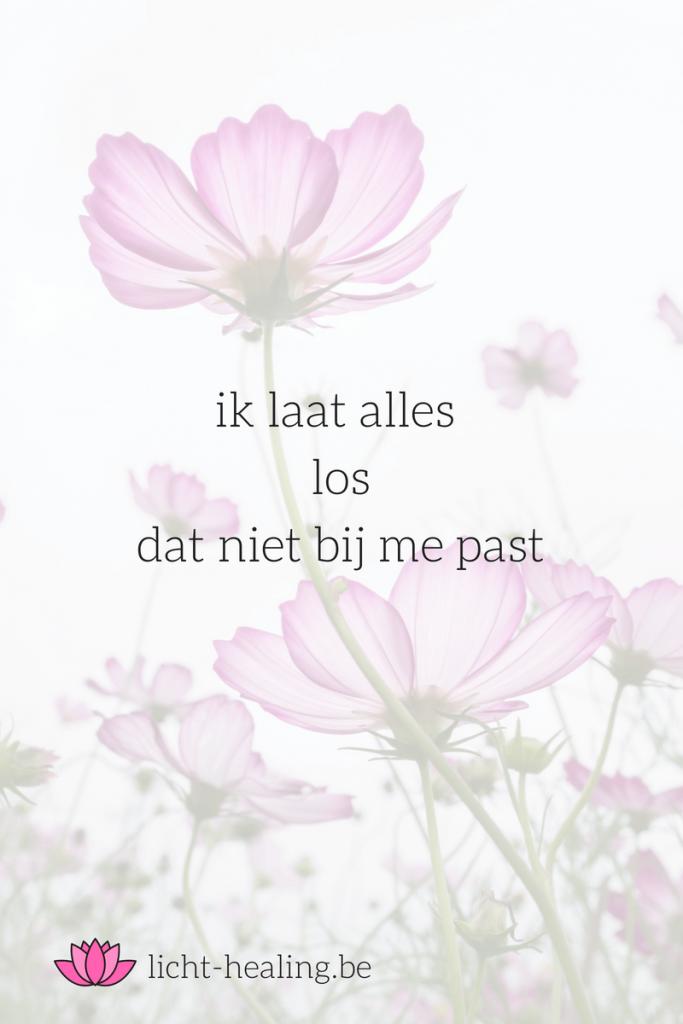 Liefde, zelfvertrouwen, loslaten, quote, nederlands, ik laat alles los dat niet bij me past, mantra, mindset, depressie, coach