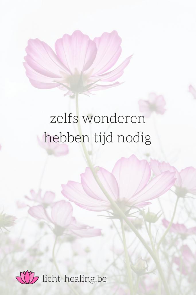 zelfs wonderen hebben tijd nodig, quote, nederlands, depressie, coach, mindset, therapie, anders denken, alleen zijn, mantra, spiritueel