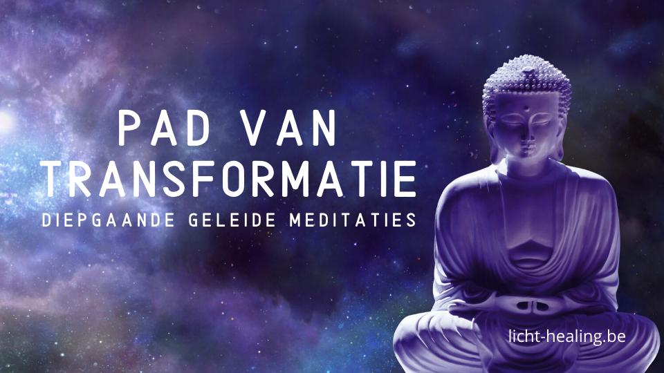 Het pad van transformatie is bestaat uit een reeks geleide meditaties die heel erg diep gaan. We gaan diep in onze schaduw en laten alle leugens los die wij onszelf al eeuwen vertellen. Op zoek naar transformatie en diepgang? Doe mee!