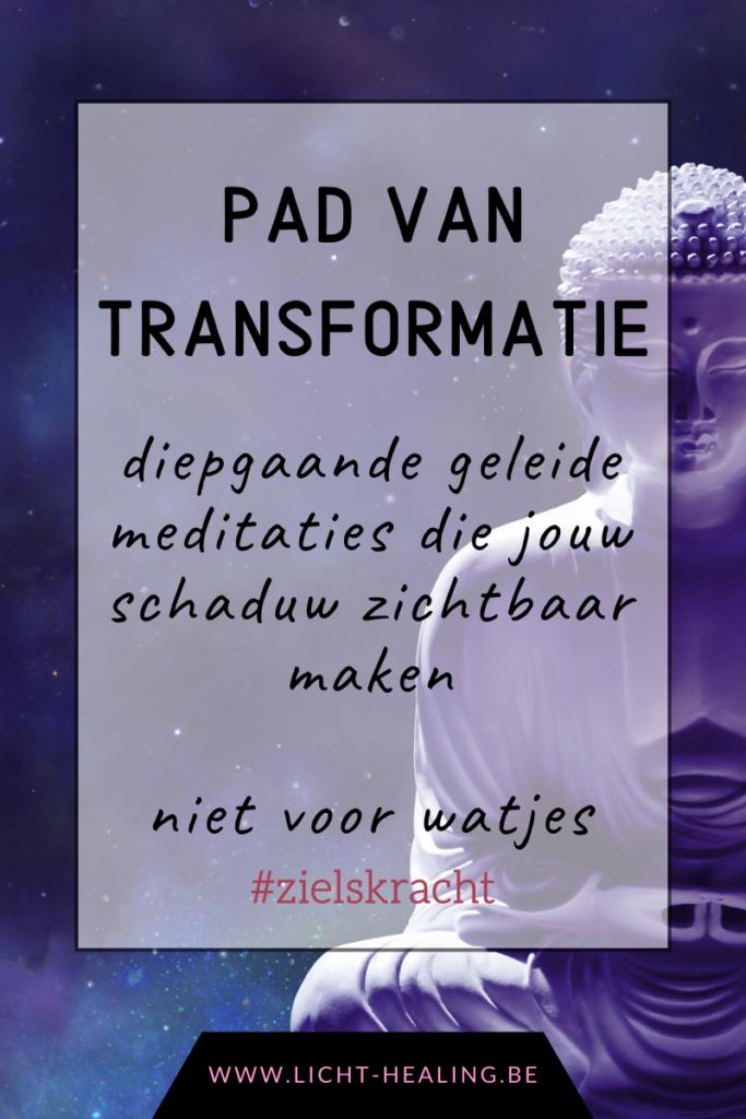 Het pad van transformatie, voor wie diepgaand een nieuwe werkelijkheid wil neerzetten en wil leven vanuit ware en totale overvloed. Durf diepgaand te mediteren en durf licht te schijnen op jouw schaduw.