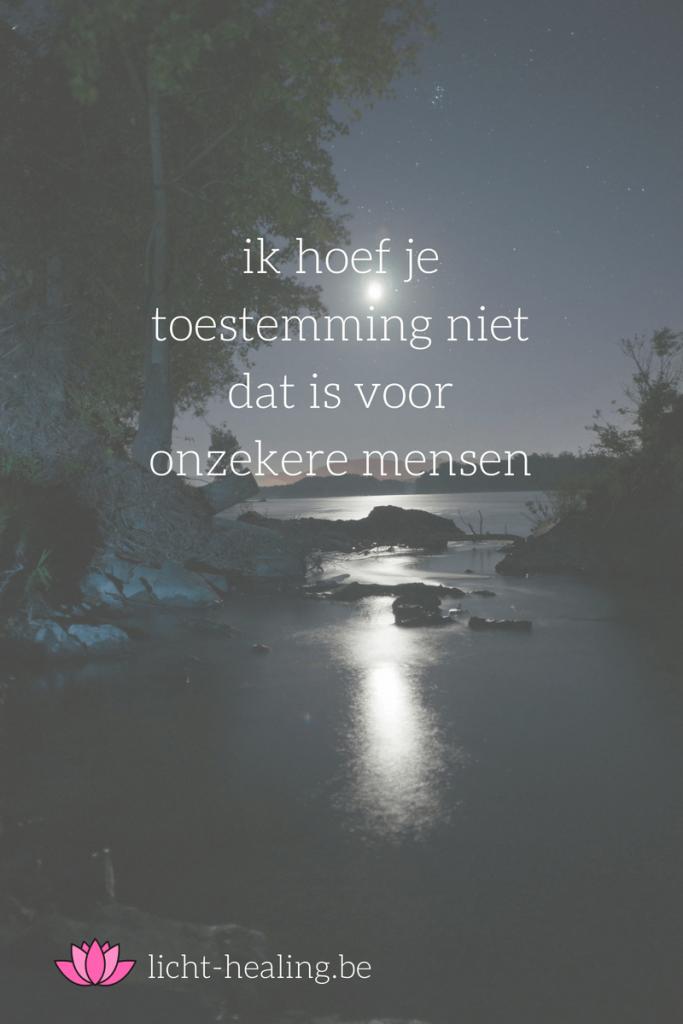 ik hoef je toestemming niet dat is voor onzekere mensen, quote, nederlands, depressie, mindset, coach, geluk, burn-out, mantra, zielsdoel