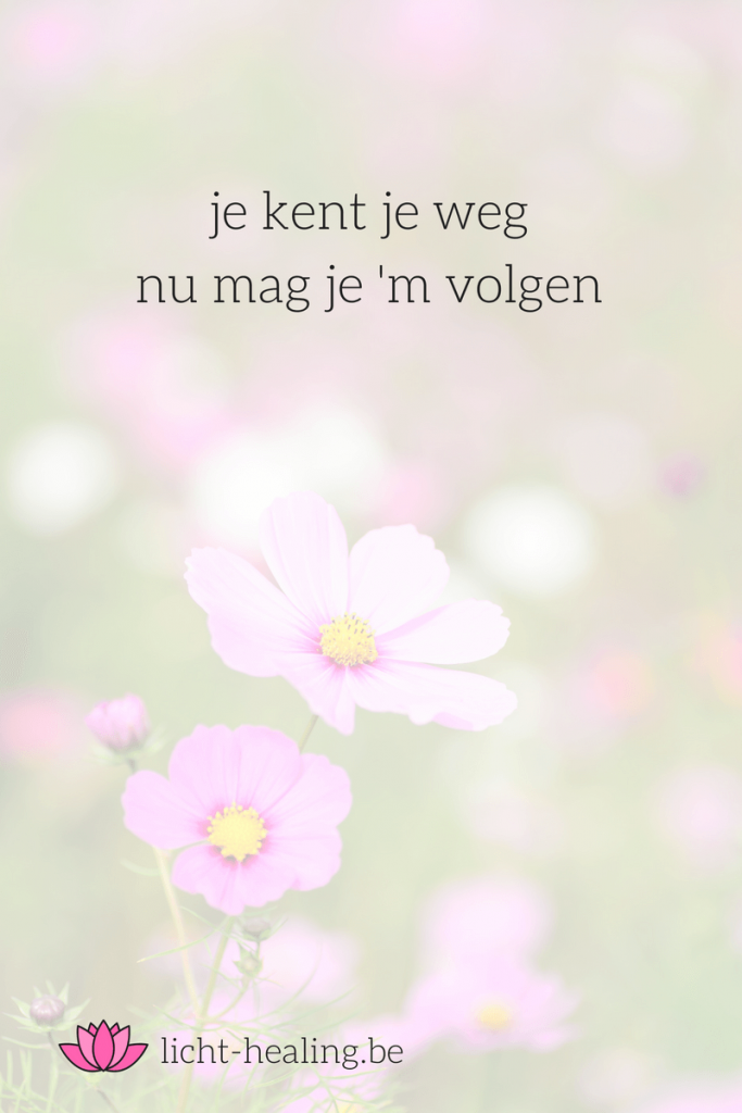 je kent je weg, nu mag je hem volgen, geluk, transformatie, depressie, liefde, spiritueel, quote, nederlands, mindset, zielsmissie