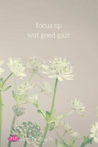 Focus op wat goed gaat in jouw leven.