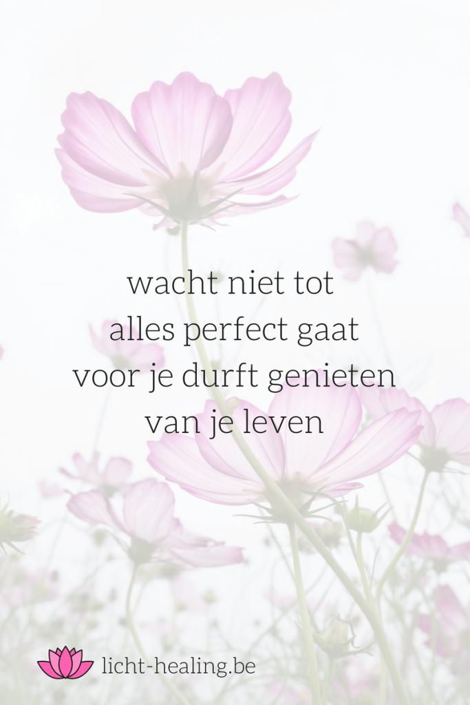 wacht niet tot alles perfect gaat voor je durft genieten van je leven, quote, nederlands, depressie, mindset, geluk, gedachten, mantra, spiritueel
