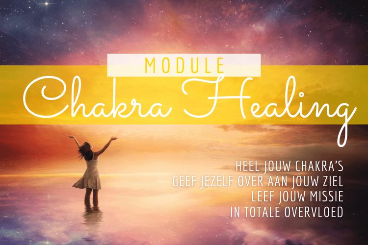 Heel jouw 7 basis chakra's in sneltempo aan de hand van simpele oefeningen en diep inzicht met een schep meditatie en quantum healing.